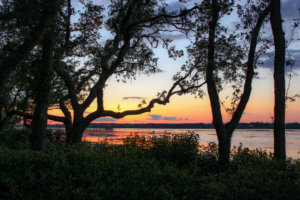 Staying at Disney's Hilton Head Island Resort- Do as Dreamers Do